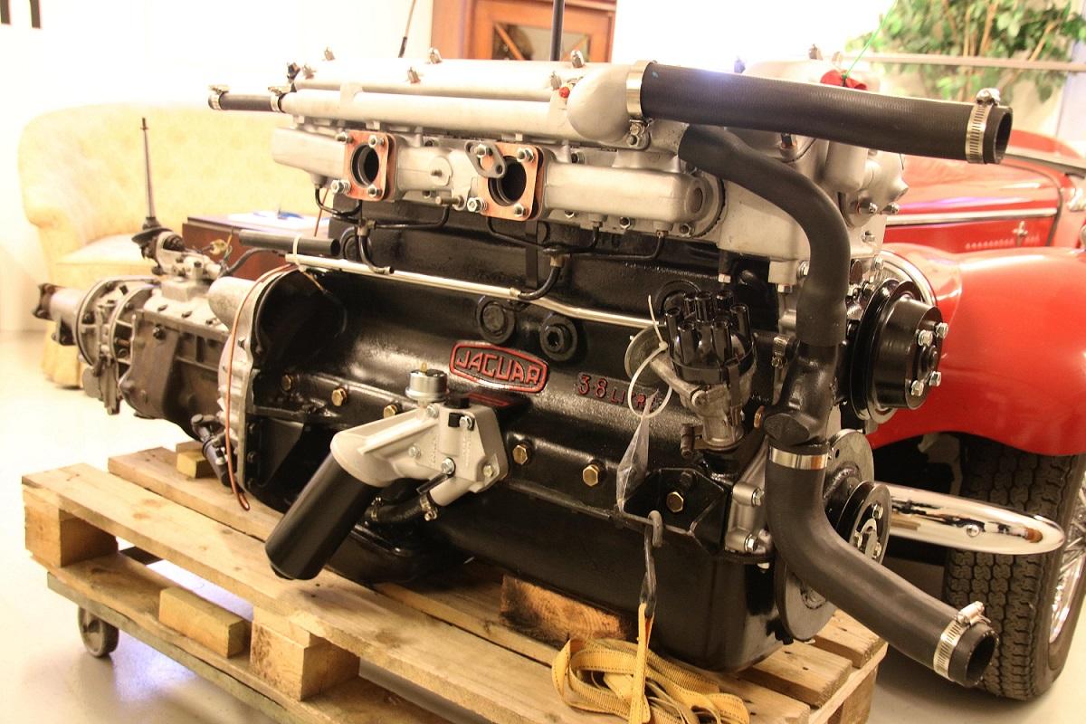 Jaguar13a